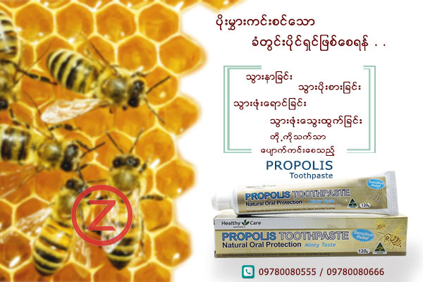 Healthy Care Propolis Toothpaste